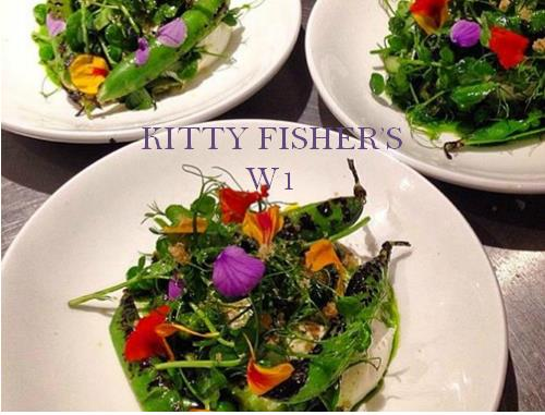 Kitty Fisher's